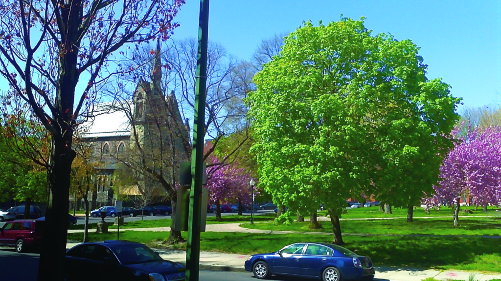view from front step of town house to adjacent corner of Lafayette Square