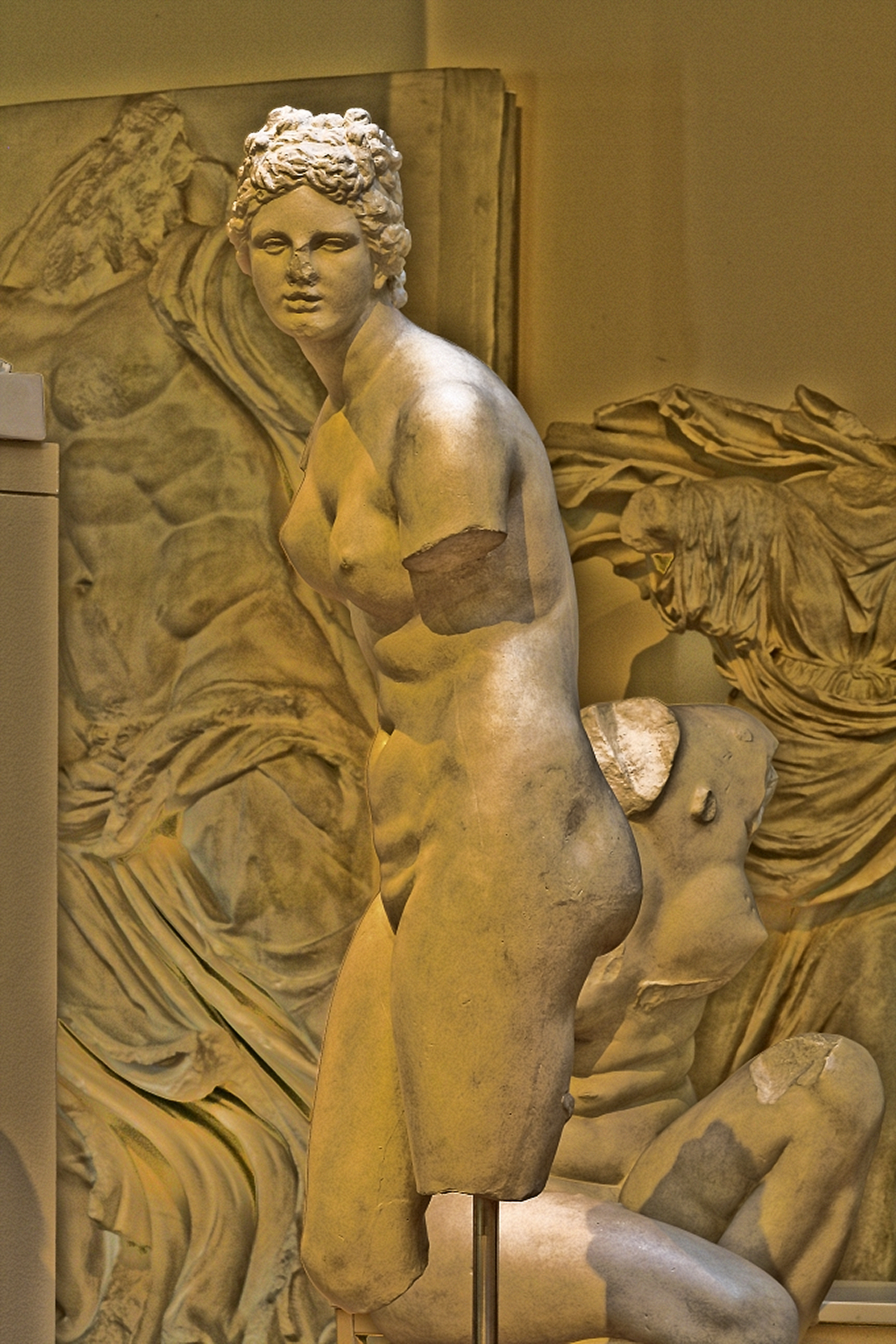 Venus de Medici type, 1, Munich cast collection