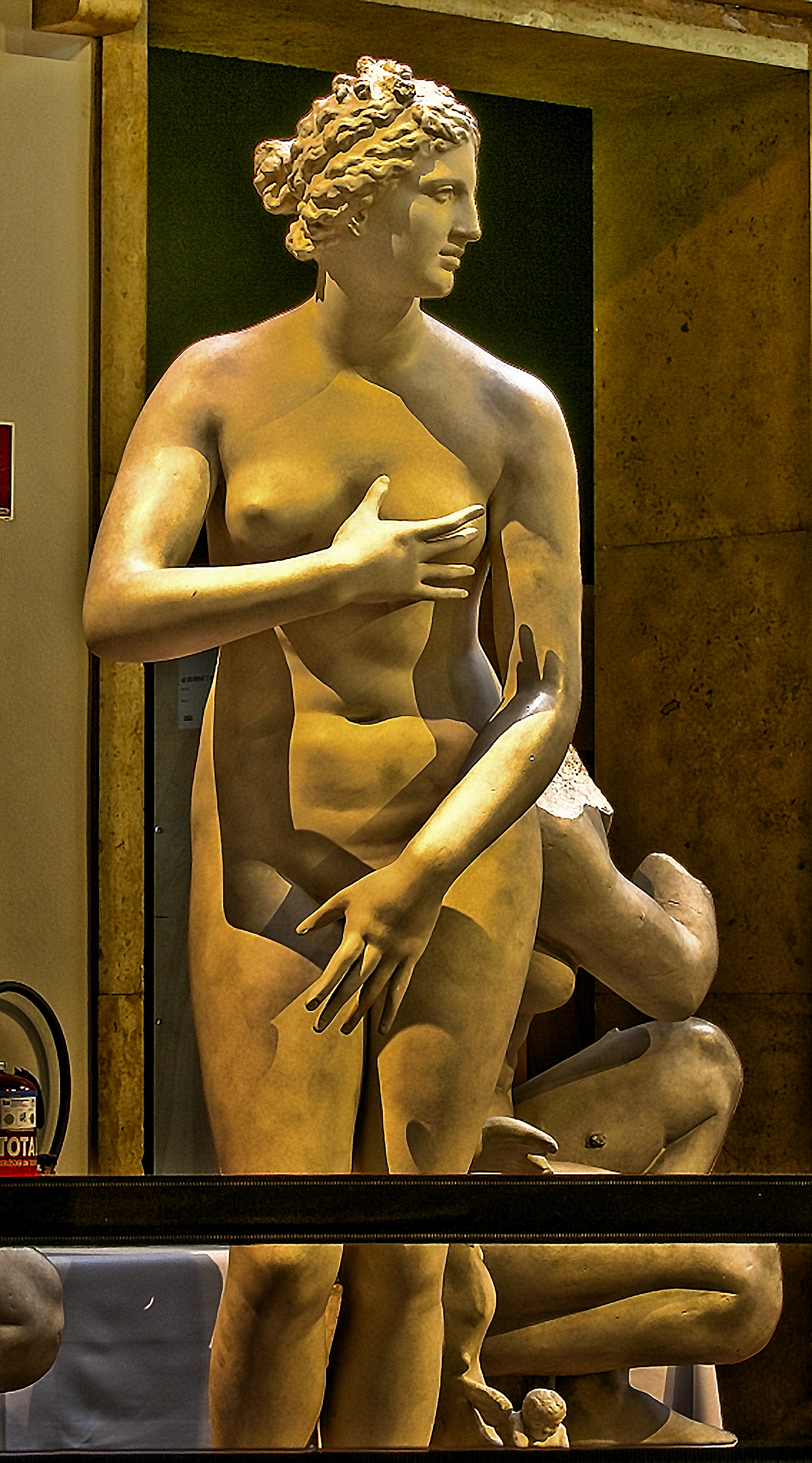 Venus de Medici, plaster Munich collection, 1