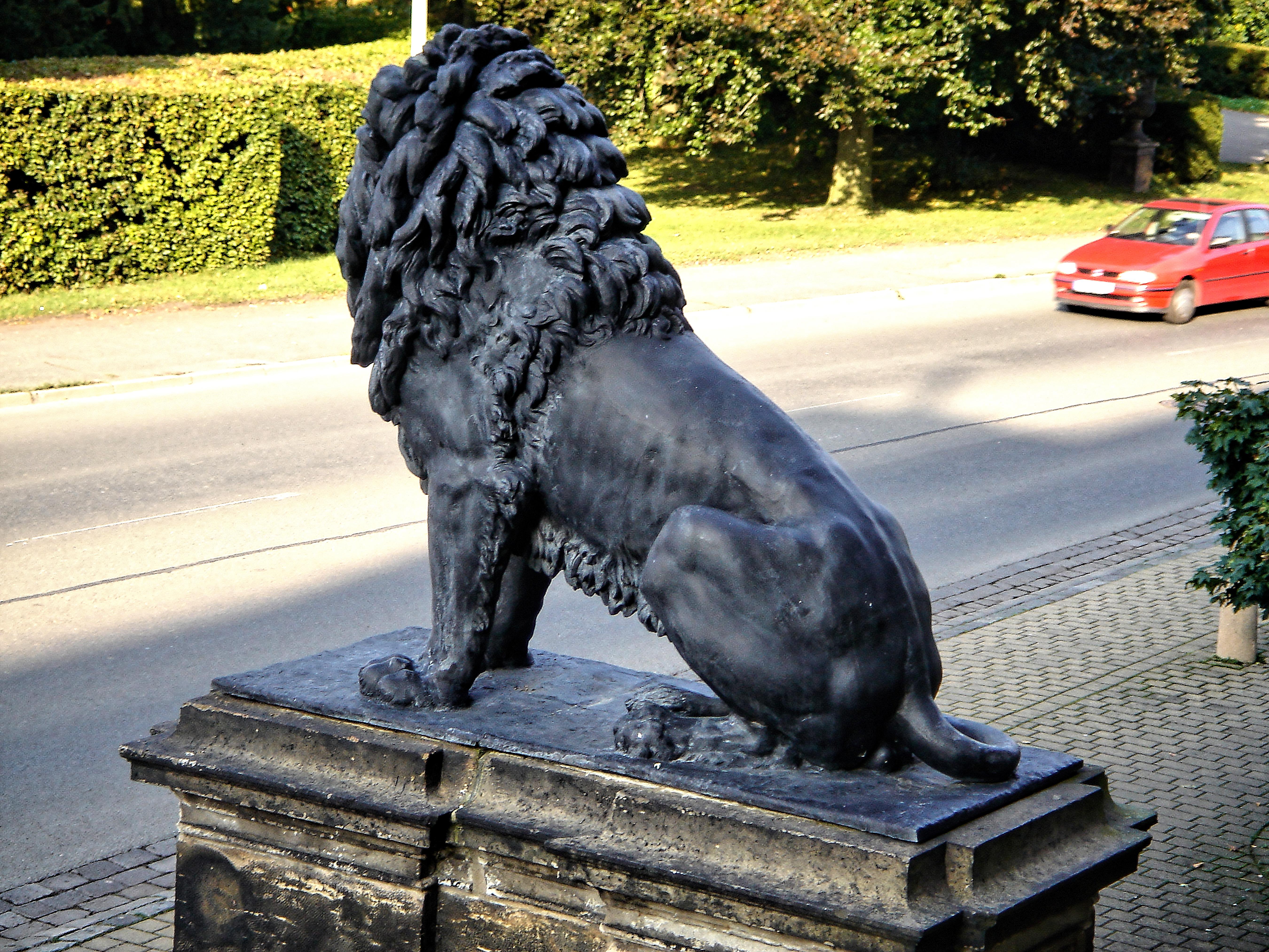 Museum Der Natur, Gotha, Thüringen - Lion