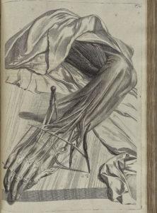 Gerard de Laraisse - Bidloo Ontleding 1690 - 70
