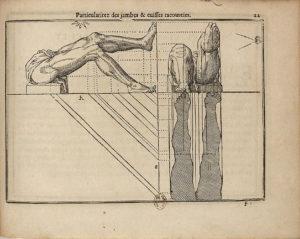 Jean Cousin - LIVRE DE POVRATRAICTVRE 1595